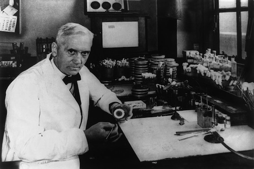 a biography of alexander fleming a scottish biologist pharmacologist and botanist On august 6th, 1881, alexander fleming was born in ayrshire, scotland  alexander fleming was a scottish biologist, botanist, pharmacologist, and.